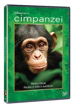 Cimpanzei